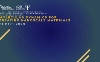 Workshop of working groups : Molecular dynamics for treating nanoscale materials
